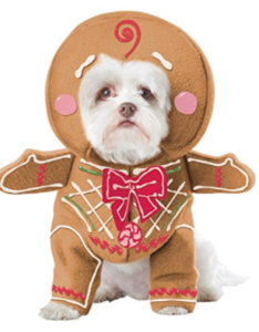 Gingerbread dog costume